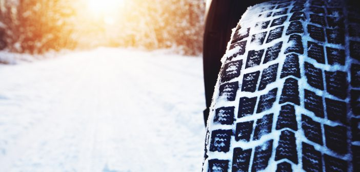 Popular 4x4s to consider this winter