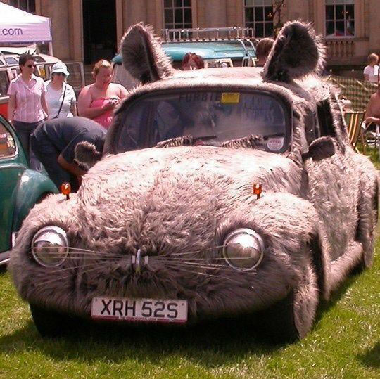 funny-mouse-car