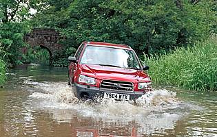 pic of Forester in water