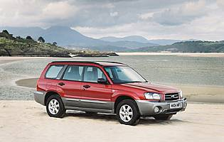 pic of Forester on beach