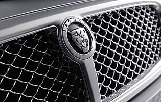 picture of grille