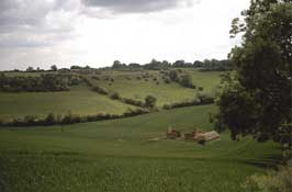 Cotswolds_Walks7.jpg