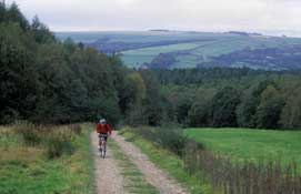 Yorkshire_Cycle21.jpg