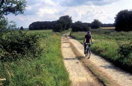 Yorkshire_Cycle28.jpg