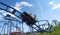 The Cobra at Paultons