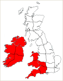 Localised flooding possible in the south west and Ireland