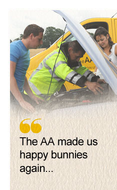 The AA made us happy bunnies again...