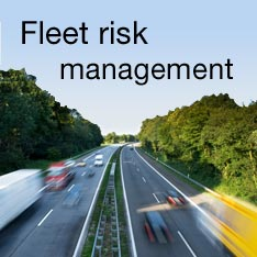 Fleet risk management