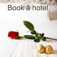 Search and book hotels